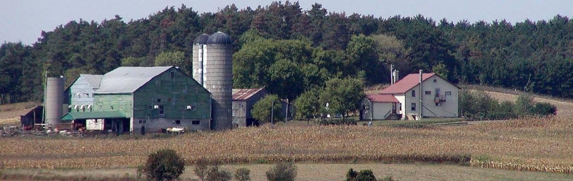 английска ферма